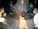 Berbazulo_2009_Aquarium_11.jpg